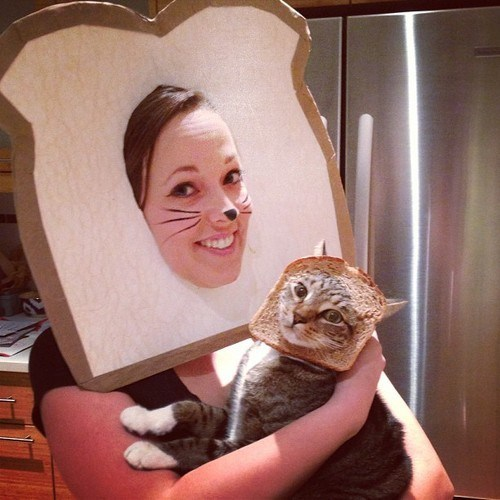 halloween costumes,cat,bread