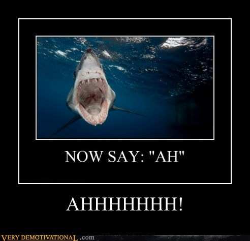 scary WoW shark ah