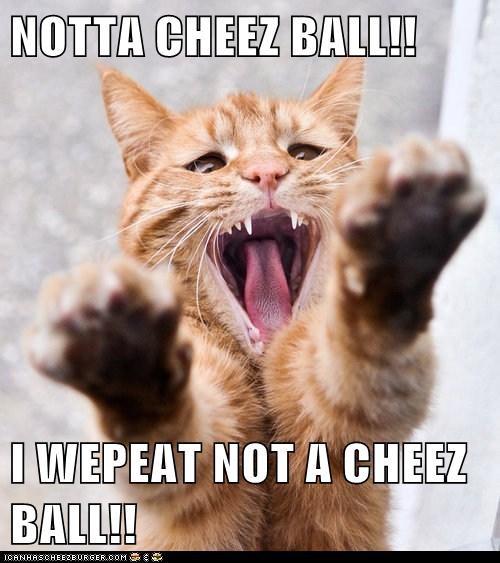 NOTTA CHEEZ BALL!!  I WEPEAT NOT A CHEEZ BALL!!