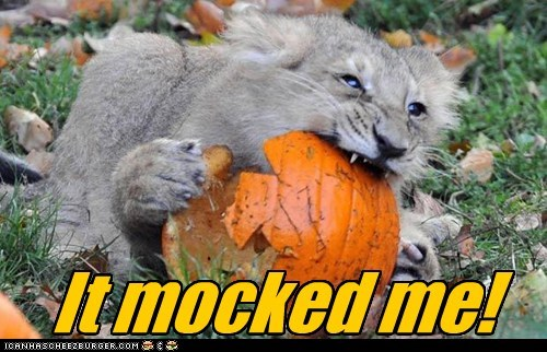 mocked killed pumpkins lion eating - 6710103040