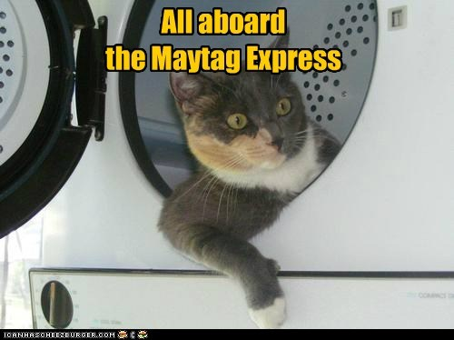 All aboard the Maytag Express