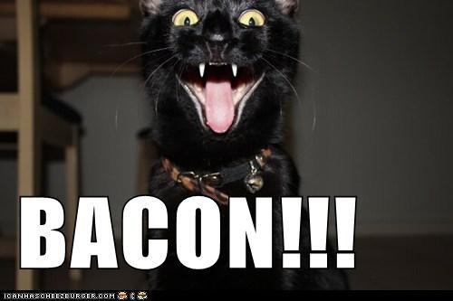 BACON!!!
