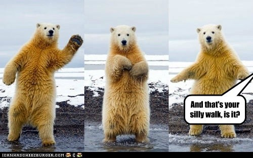 silly walk,monty python,polar bears,demonstration