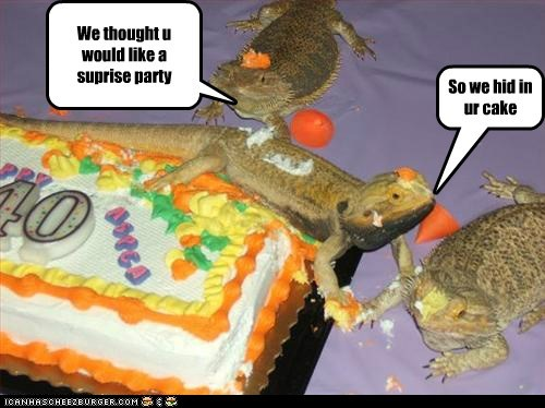 cake,lizards,birthday,gross,hid,surprise party