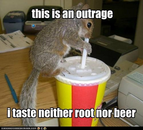 drinking root beer neither squirrel outrage ripoff straw
