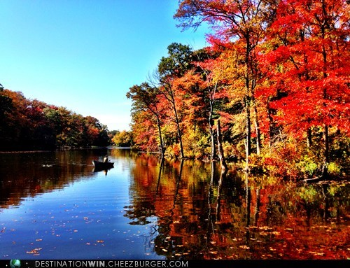 autumn,pretty colors,sylvan scrying,lake,fall