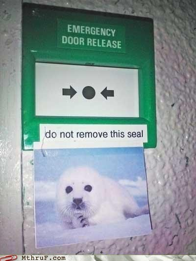 emergency door release,emergency,seal,heed