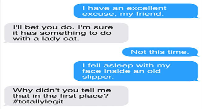 funny texts from mittens the cat
