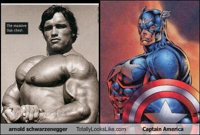 actor,TLL,Arnold Schwarzenegger,captain america,celeb,superhero,funny
