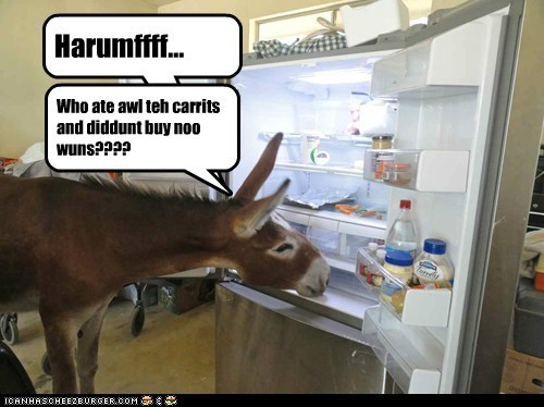 Harumffff... Who ate awl teh carrits and diddunt buy noo wuns????