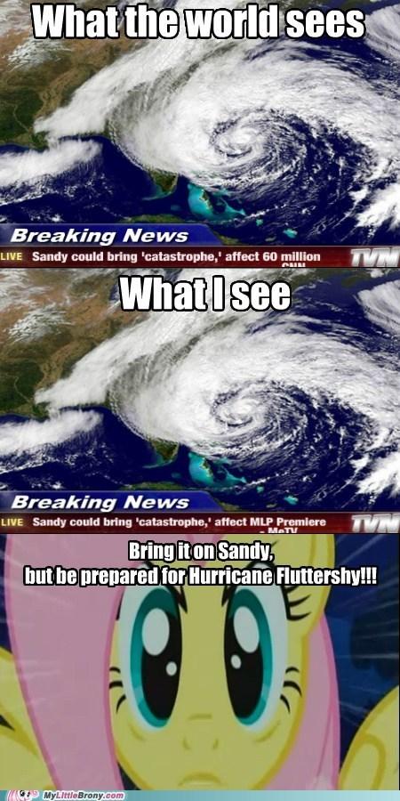 fluttershy hurrican sandy hurrican fluttershy - 6716502784
