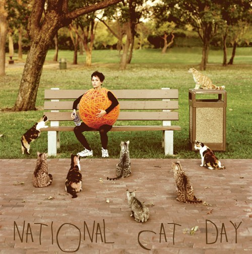 yarn national cat day Cats holidays - 6716512768