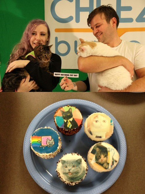 cheezburger,celebration,cupcakes,national cat day