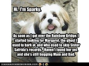 Sparky's Mission in the Afterlife