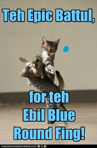 blue epic Battle thing captions fight Cats - 6717837568