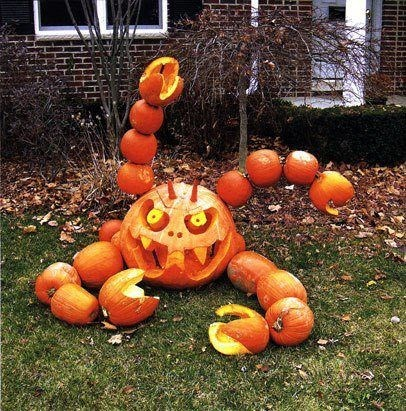 carving,design,halloween,pumpkins