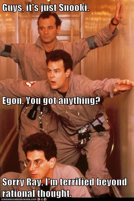 bill murray,harold ramis,dan aykroyd,actor,celeb,funny