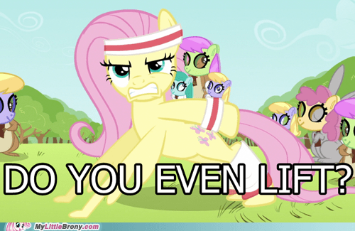 brossssss do you even lift fluttershy - 6718888192