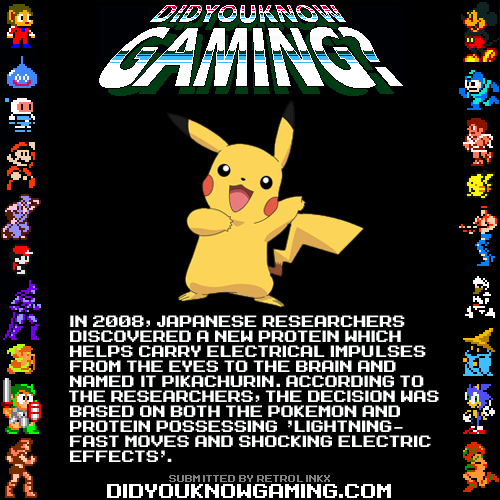 did you know gaming,protein,pikachu