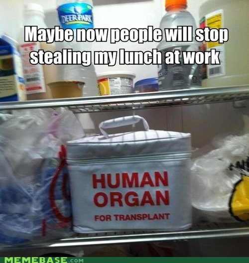 human lunch organs food transplant fridge