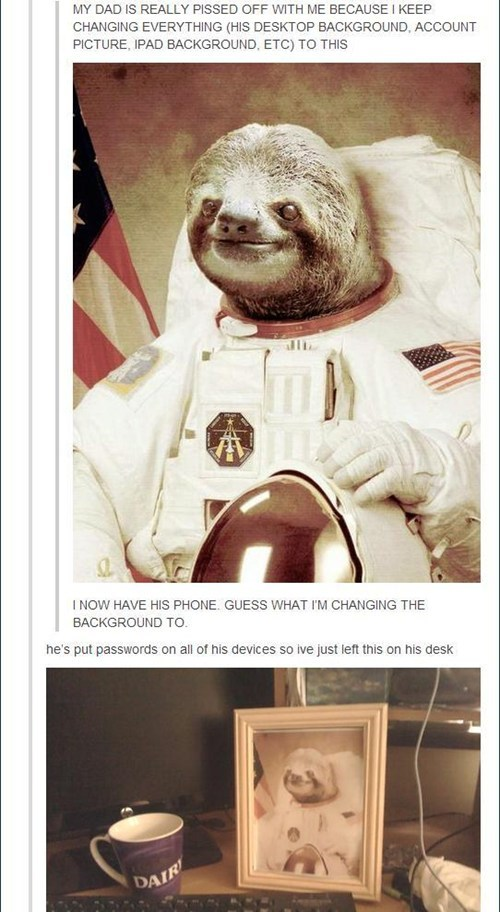 background,no problem,astronaut,sloth