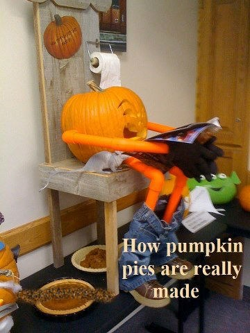 pumpkin pie,poop,jack o lanterns