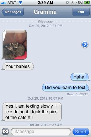 Babies,iPhones,grandma,Cats