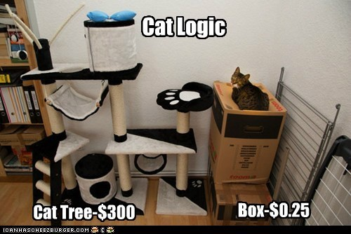 Cat Logic Box-$0.25 Cat Tree-$300