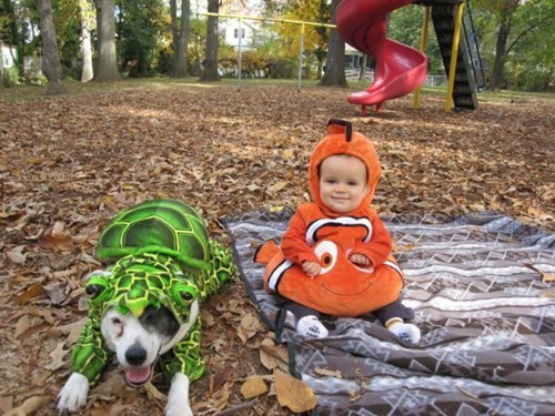 baby costumes dog costumes finding nemo - 6720706304