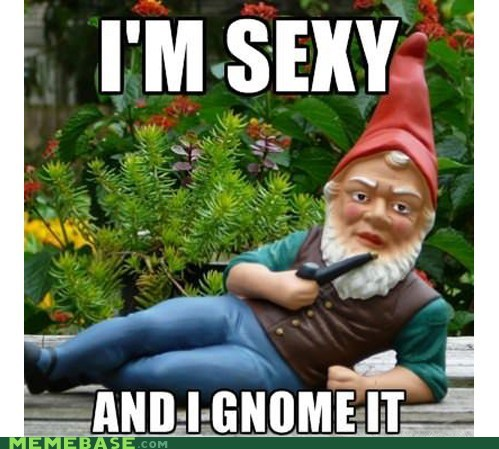 half life,gnome,lmfao,sexy and i know it