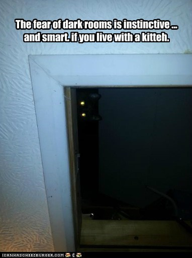 The fear of dark rooms is instinctive ... and smart. if you live with a kitteh.