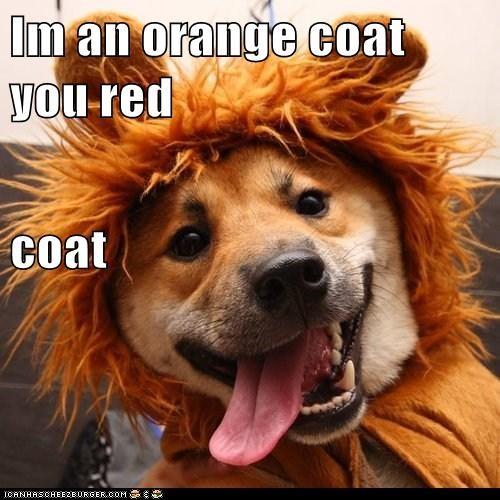 Im an orange coat you red coat