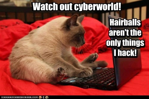 Watch out cyberworld! Hairballs aren't the only things I hack! Watch out cyberworld! Hairballs aren't the only things I hack!