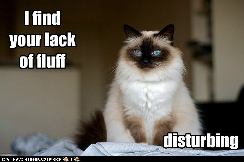 I find your lack of fluff disturbing