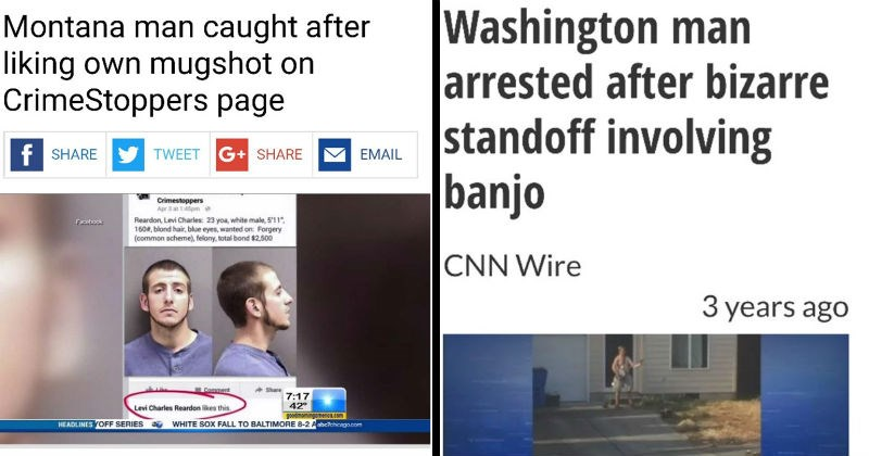 stupid criminals criminals news fox news stealing lemons headline strange crime banjo theft funny weird animals - 6722565