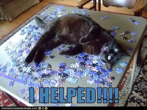 puzzle jigsaw captions help Cats - 6723027968