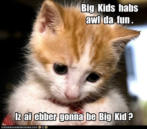 Big Kids habs awl da fun . Iz ai ebber gonna be Big Kid ?