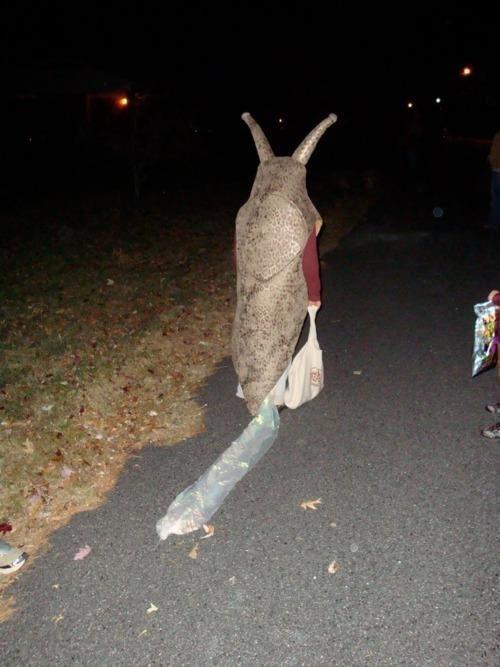halloween costumes,snail