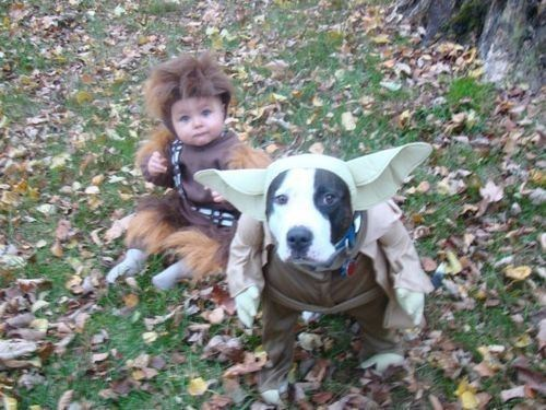 baby costumes star wars dog costumes - 6723436288
