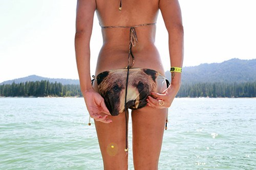 bear bikini poorly dressed g rated - 6723683840
