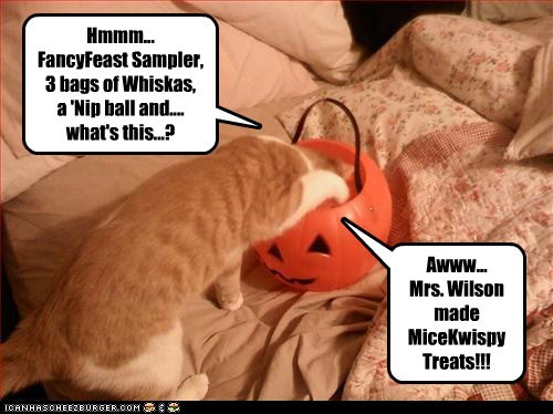Hmmm... FancyFeast Sampler, 3 bags of Whiskas, a 'Nip ball and.... what's this...? Awww... Mrs. Wilson made MiceKwispy Treats!!!