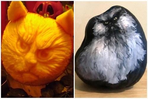 halloween,colonel meow,Cats,pumpkins