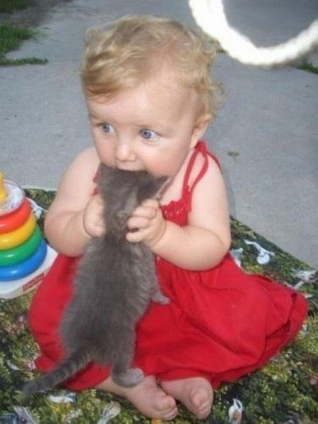 cat baby eating g rated Parenting FAILS Hall of Fame best of week - 6723917056