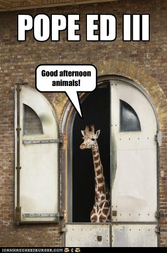pope,good afternoon,address,zoo,giraffes,animals