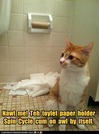 roll captions toilet paper destroy bathroom toilet spin mess Cats TP - 6725056256