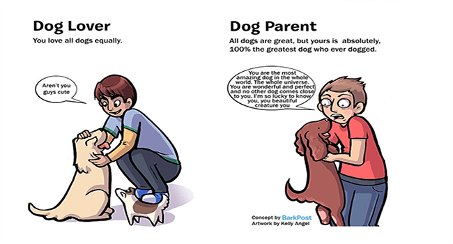 hilarious dogs adorable comics cute funny dogs lol dog comcis funny web comics - 6725637