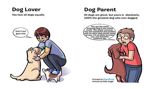 hilarious dogs adorable comics cute funny dogs lol dog comcis funny web comics - 6725637