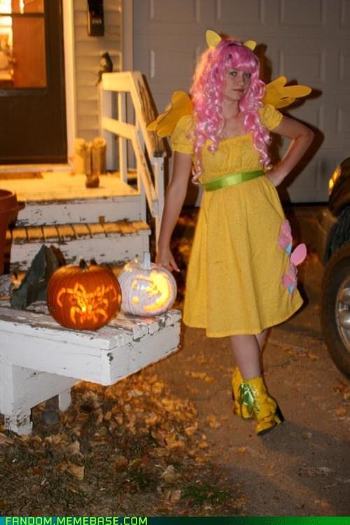 cosplay Bronies my little pony halloween fluttershy - 6725712640