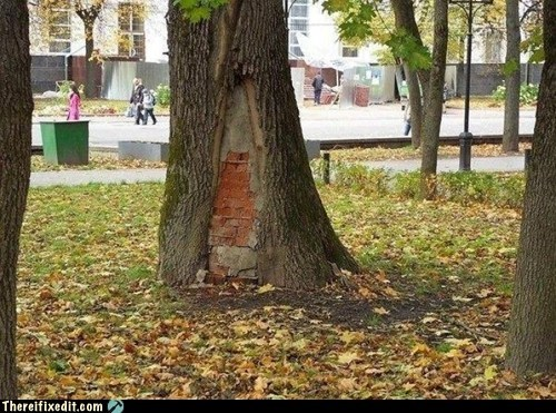 russia brick brick tree g rated there I fixed it - 6725851136