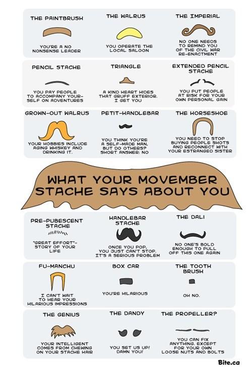 mustache men movember facial hair - 6726246400
